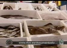 Omega 3, peixos i dieta (documental BBC-TVE)